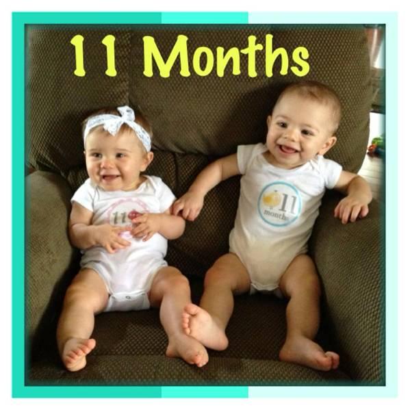 Schaeffer Twins